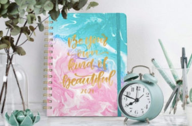 2021 Weekly and Monthly Planner Just $4 (Reg. $11)!
