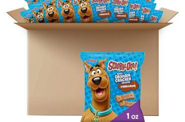 40-Pack of Scooby-Doo Graham Cracker Snacks for $9.99!
