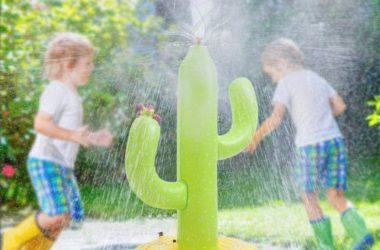 Cactus Sprinkler for just $8.00!
